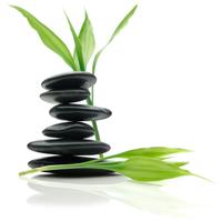 альфа_медитация